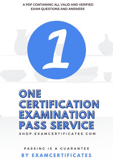 One Certification Exam Pass Google Hubspot Yandex Bing Microsoft Semrush Woorank Hootsuite Amazon Exam Certification